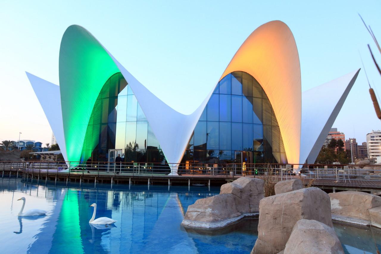oceanografic ciudad de las artes y las ciencias