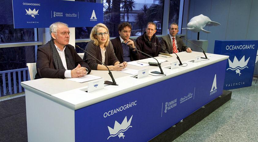 presentación nuevo oceanogràfic