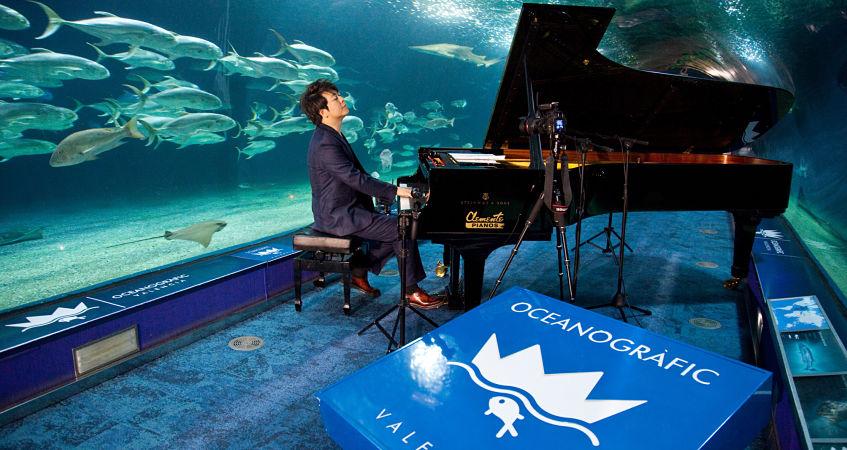 El maestro lang lang inaugura el t nel de los tiburones for Oceanografic valencia precio 2016