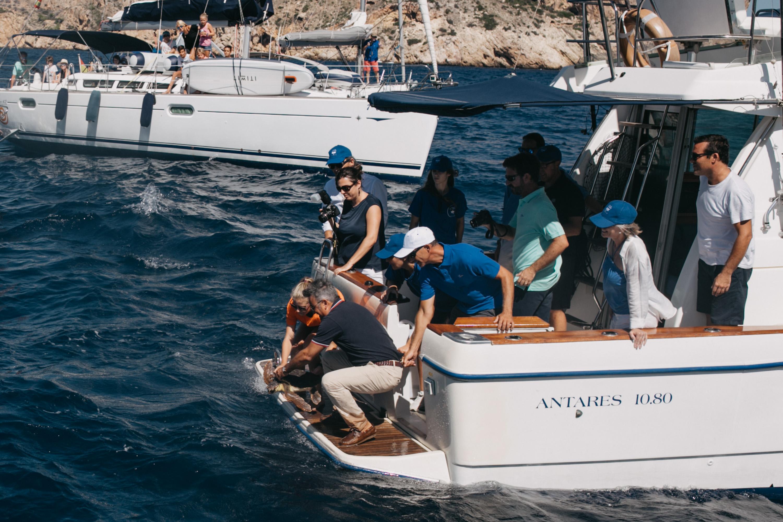 El alcalde de Xàbia, José Chulvi, en el momento de soltar a la tortuga Chiquiti al mar desde el barco