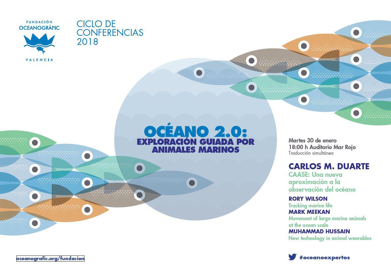 oceano 20